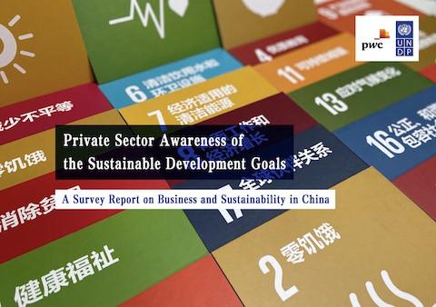 © UNDP China 2020