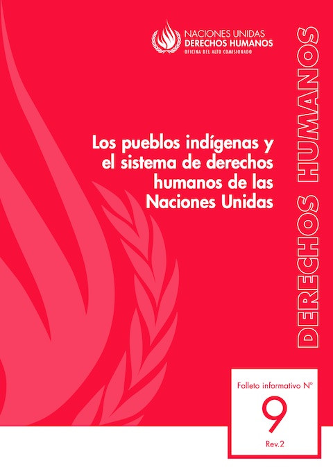© Naciones Unidas Derechos Humanos 2013
